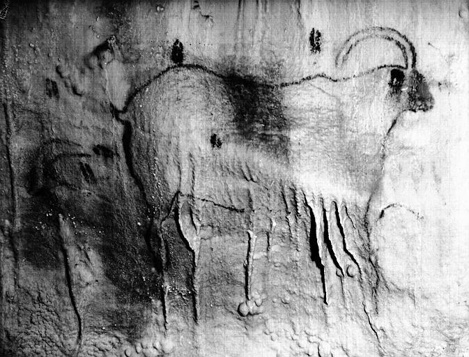 photo pour Grotte, à Cougnac