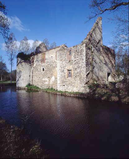 photo pour Château  lieu dit Briquemault