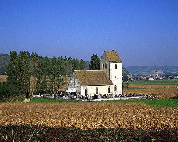 photo pour Eglise paroissiale Saint-Martin-des-Champs
