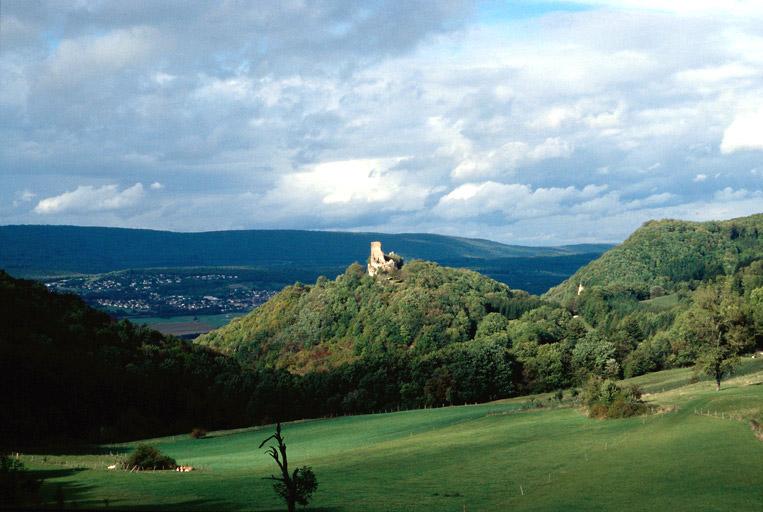 photo pour Château (ruines)